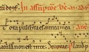 Tota pulchra es - Psallentes, Arnaud Van de Cauter - Composition Jean-Pierre Deleuze - Manuscrit Cambrai